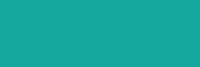 cfs-logo-3